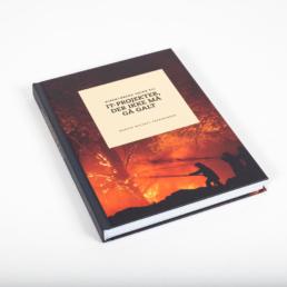 Direktørens guide til IT-projekter der ikke må gå galt
