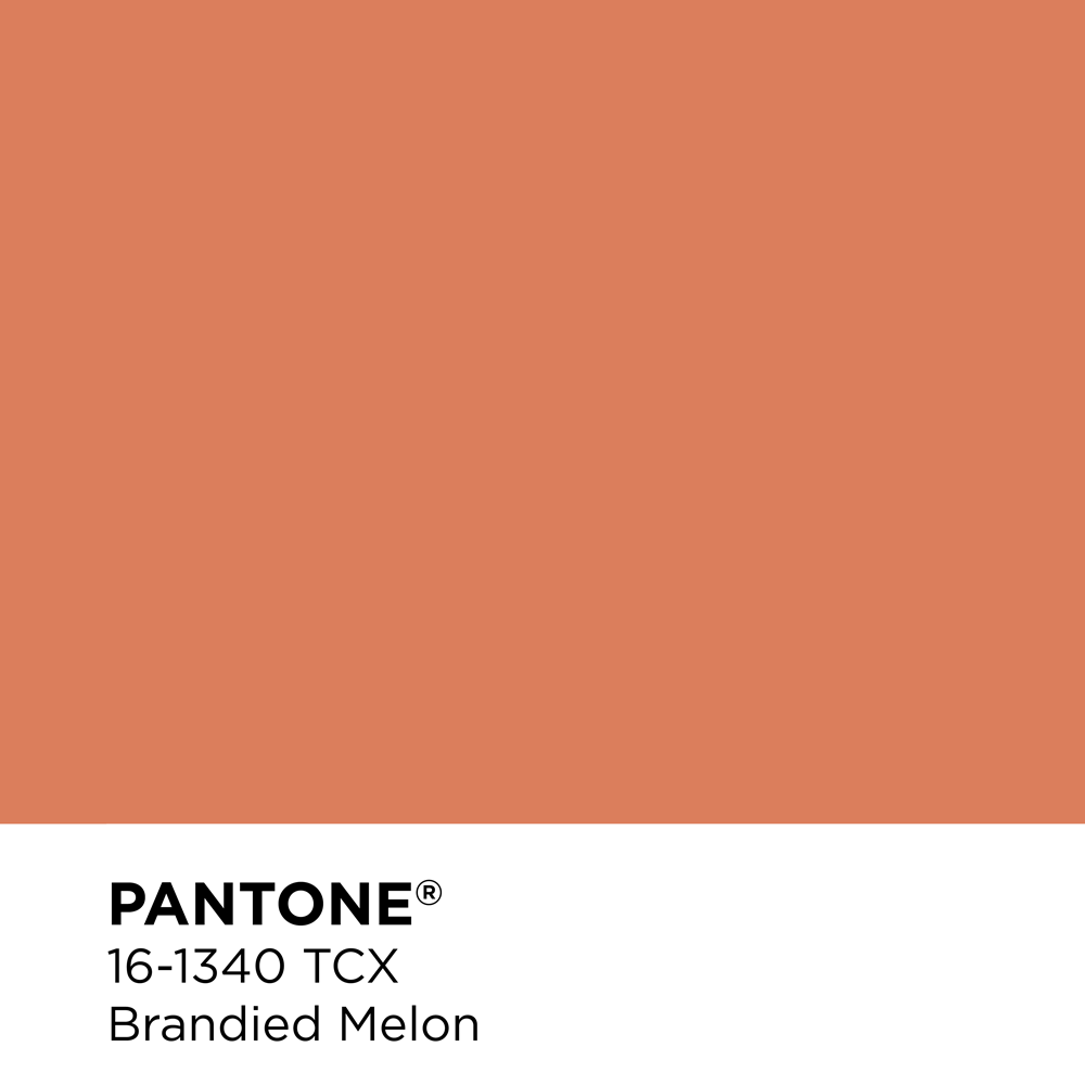 Pantone 16-1340 - Brandied Melon