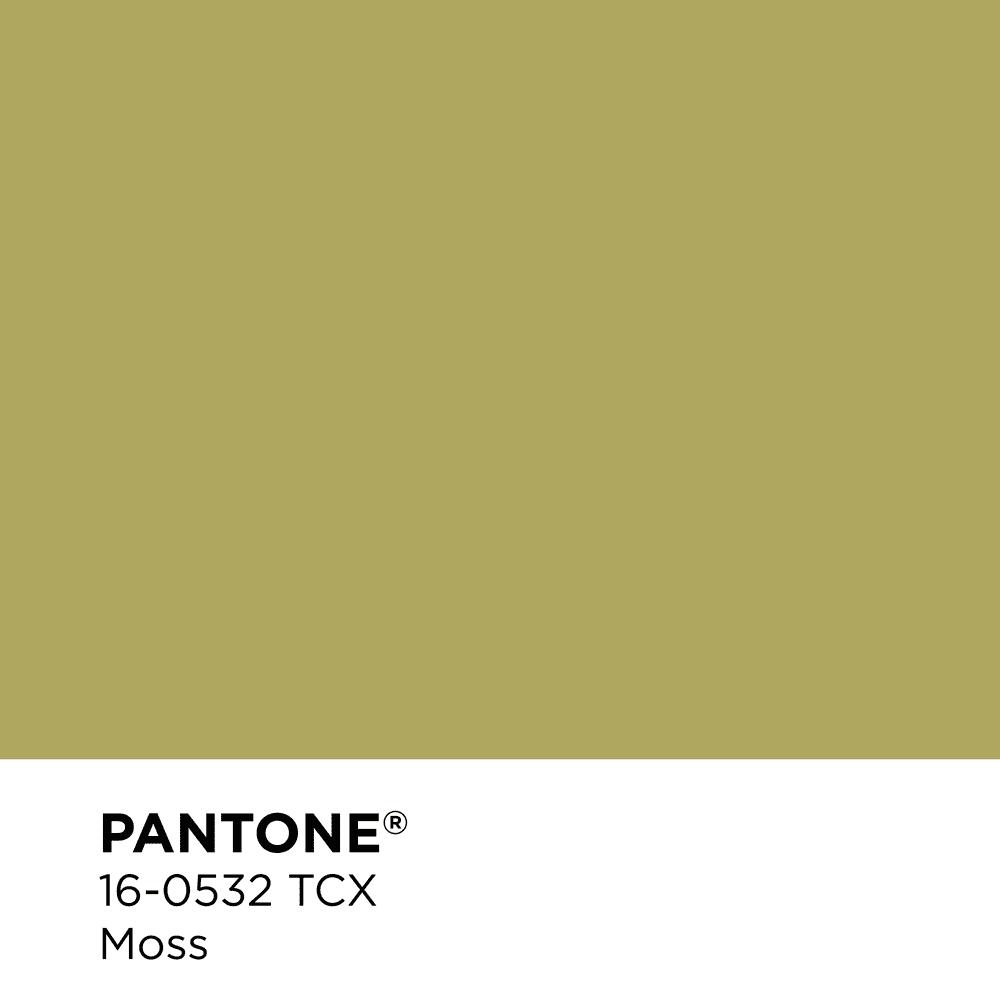 Pantone 16-0532 - Moss