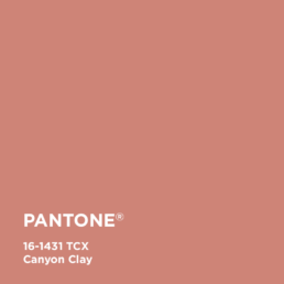 Canyon Clay 16-1431