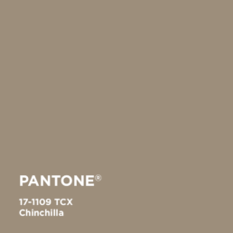 Chinchilla 17-1109