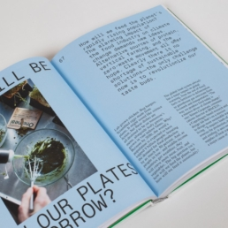 Delicious Places book from gestalten