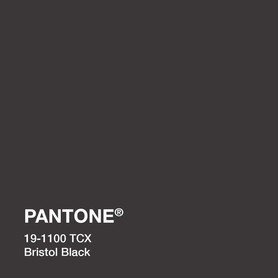 pantone_19-1100